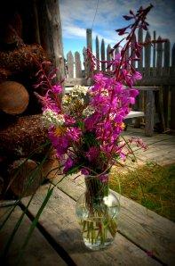 Brian's wildflowers