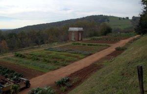 Monticello gardens on the terraces