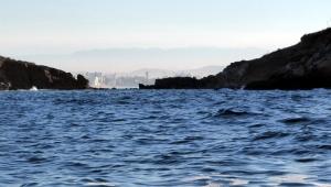 Between Deer Island and Wolf Island