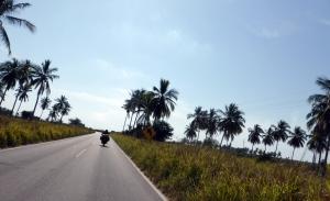 Bike Trip Puerto Vallarta 010