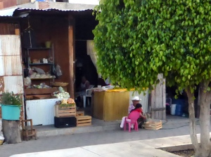 Bike Trip Oaxaca 140