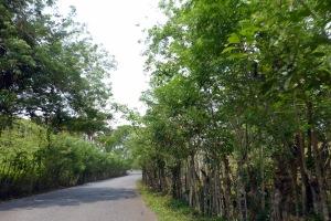 Bike Trip Panajachel 044