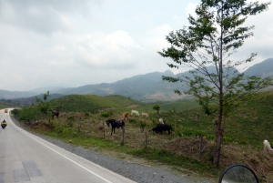 Bike Trip Panajachel 079