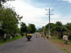 Bike Trip Santa Ana 339