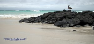 Bike Trip Galapagos 065