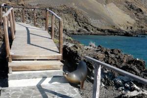 Bike Trip Galapagos 1184