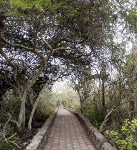 Bike Trip Galapagos 597