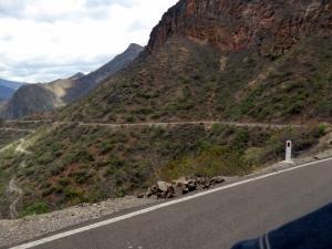 Bike Trip Celendin 250