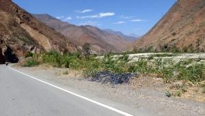 Bike Trip Huanchaco 009
