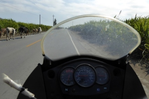 Bike Trip Cuzco 085