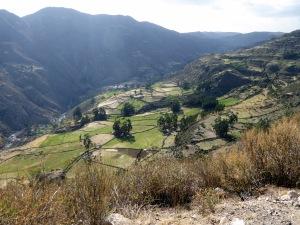 Bike Trip Cuzco 418