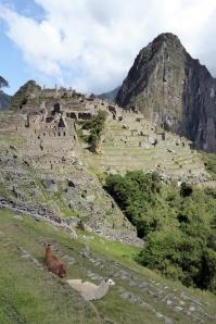 Bike Trip Machu Picchu 364