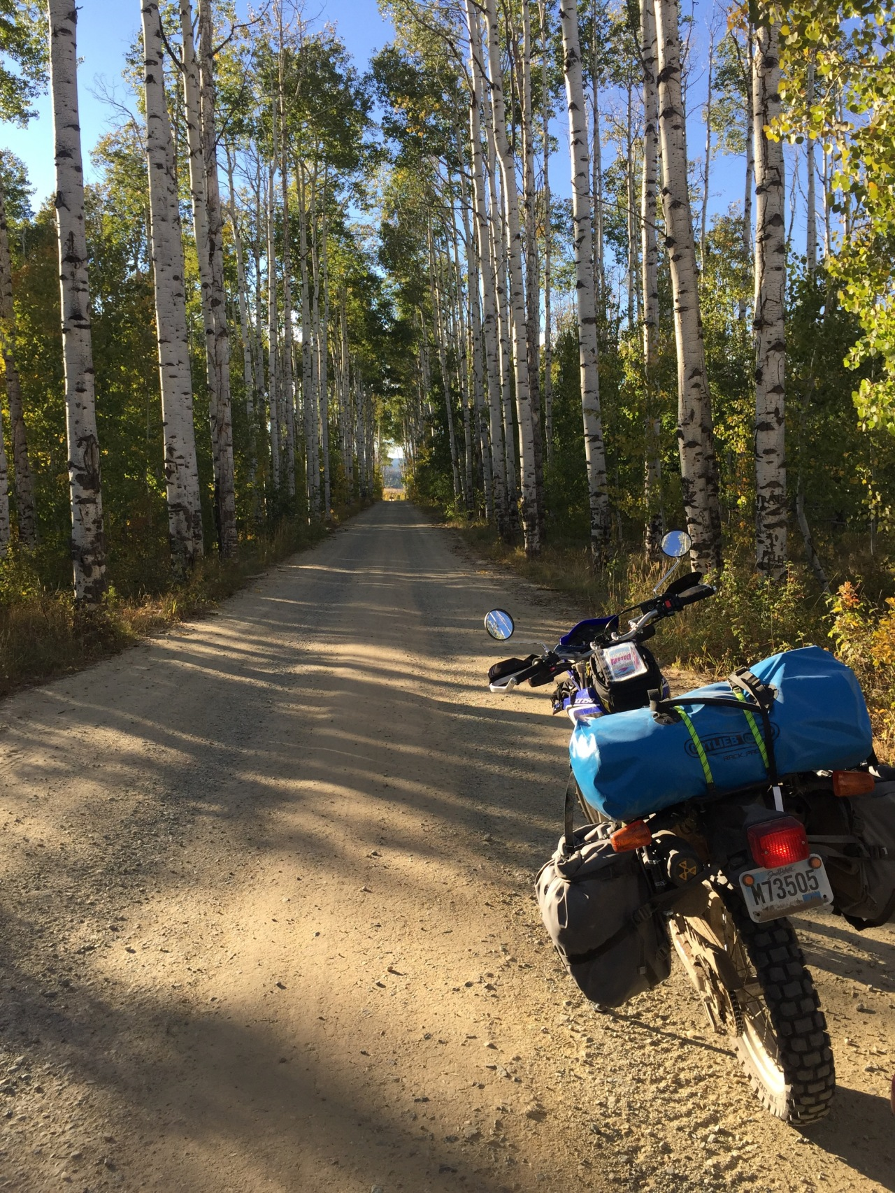 Out of the desert and into theAspen