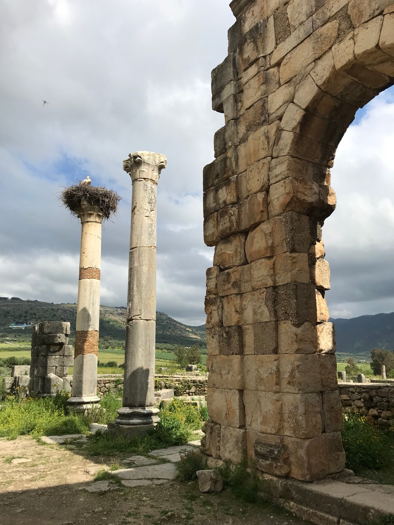 The road to Volubilis, Meknes andFes
